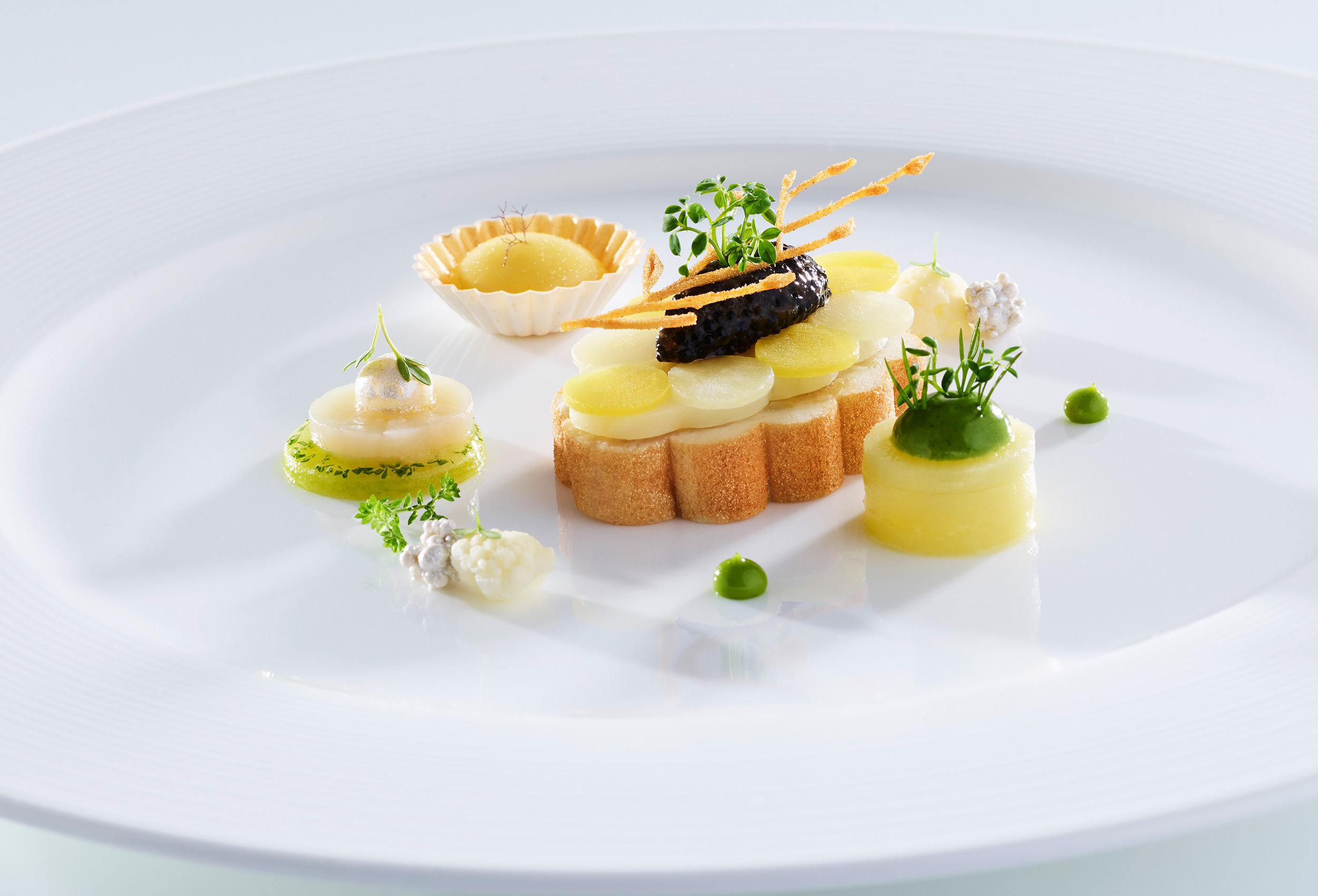 CAP_Bocusedor_press_jan19_002